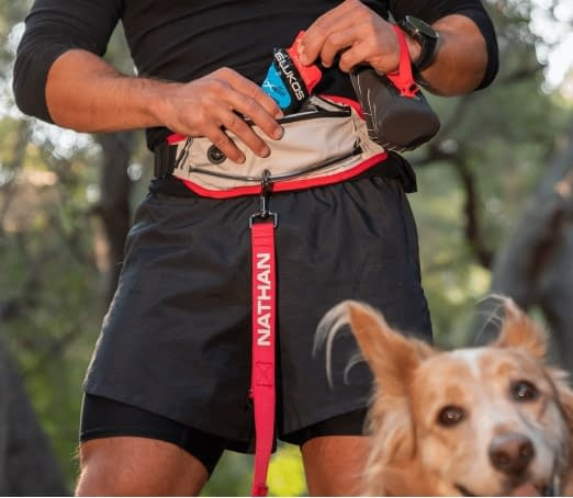 waistpack-leash-dog-movement